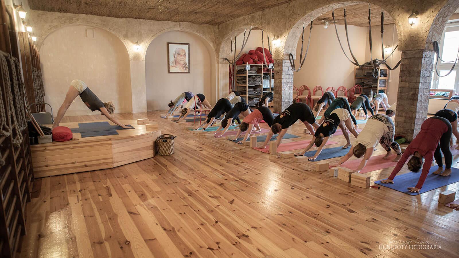 Zajecia jogi - grupa Grupa początkująca